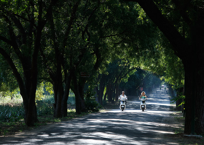 The enterence road to Amazing Bagan Resort